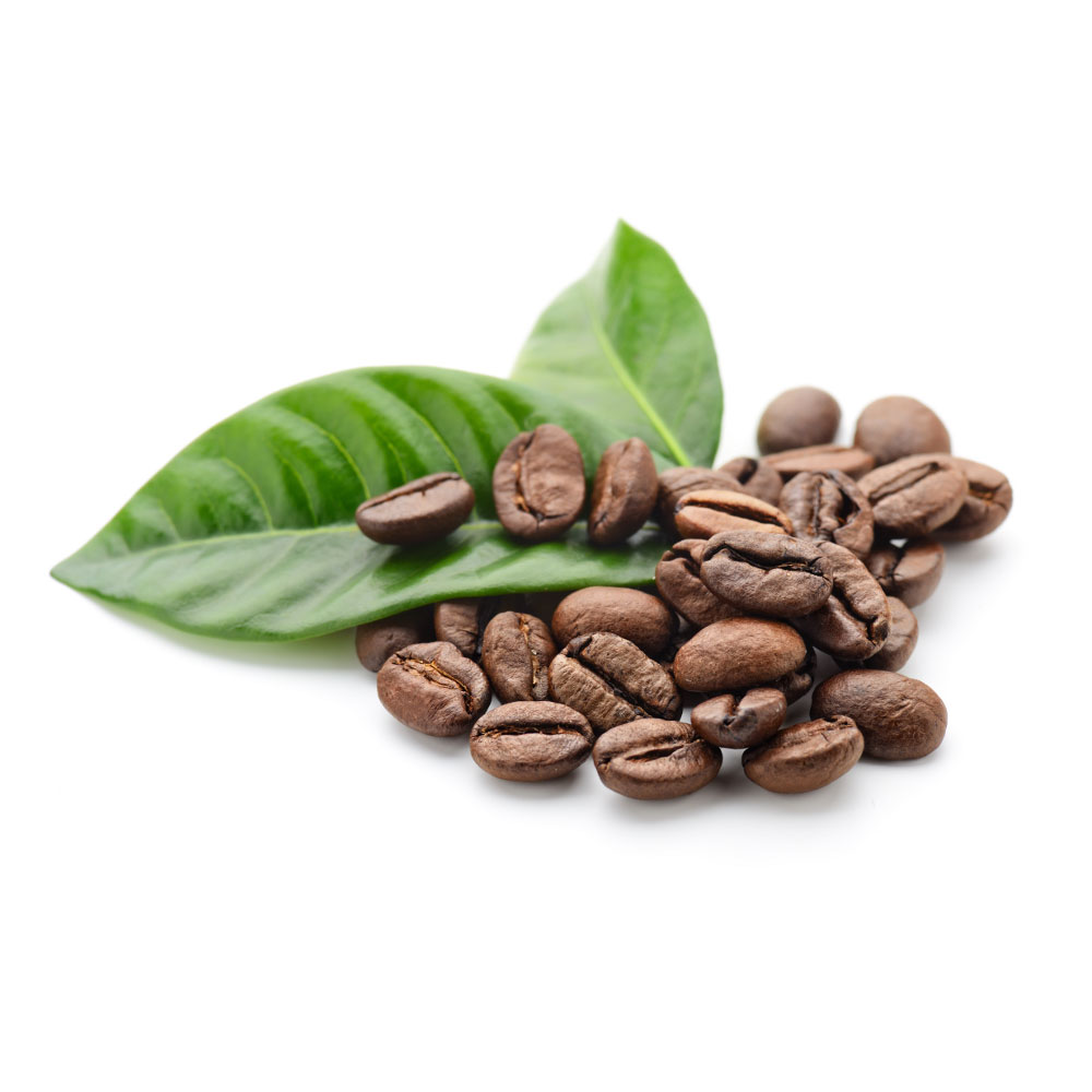 Coffee_Beans_&_Leaf.jpg