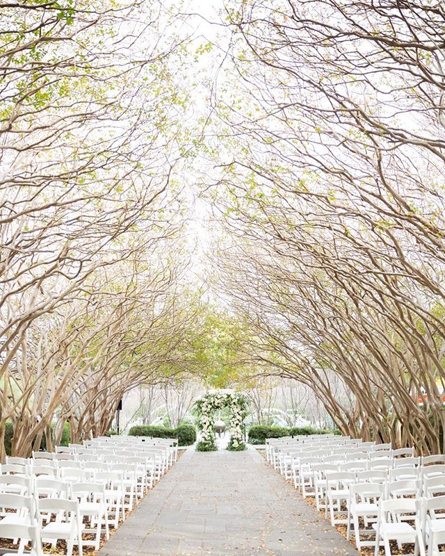 Beautiful ceremony setup at Crepe Myrtle Allee for Allie and Daniel 💕  Photo: @randimichellephotography  Floral: @blushingtonblooms  Venue: @thedallasarboretum