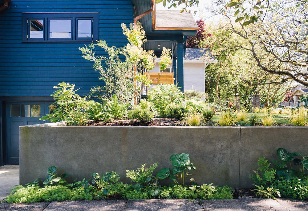 Overlook - Pistils Landscape Design-4.jpg
