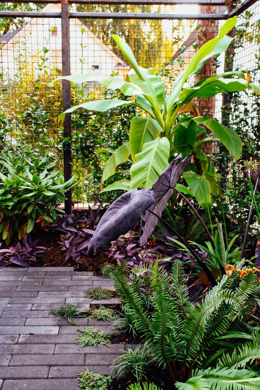 Boise Eliot Modern Pistils Landscape Design-7.jpg