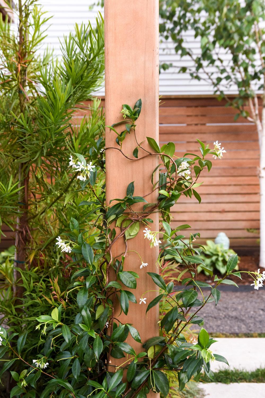 Overlook - Pistils Landscape Design-8.jpg