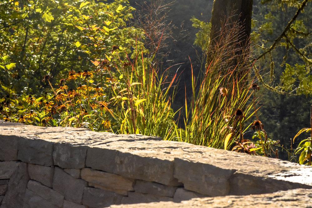Forest Park - Pistils Landscape Design-24.jpg