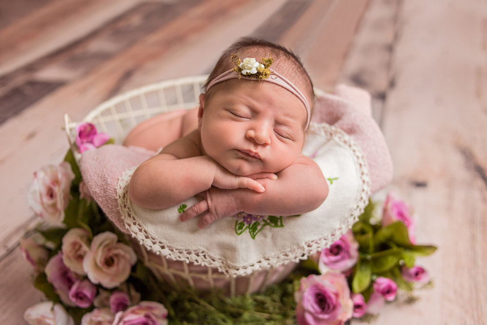louisville, ky newborn photographer