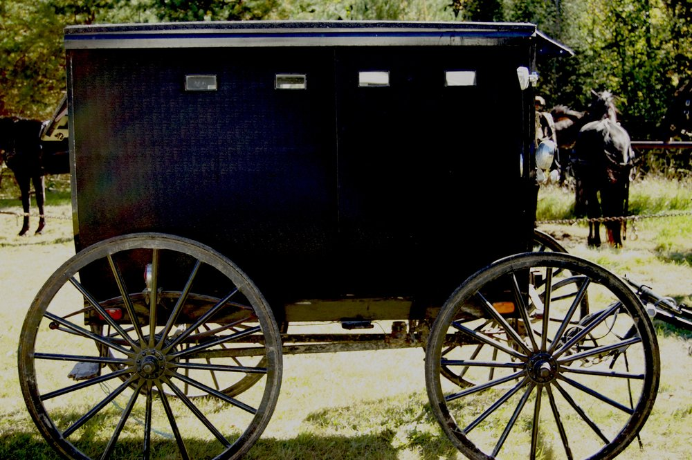 amish_buggy_photo_1.jpg