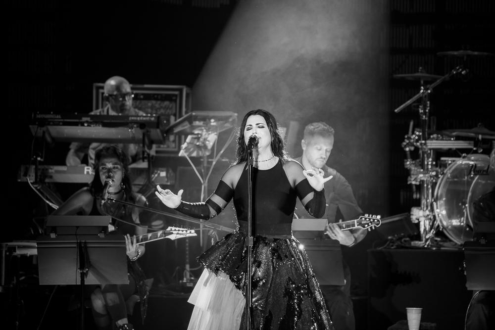 Evanescence-5 (1 of 1).jpg