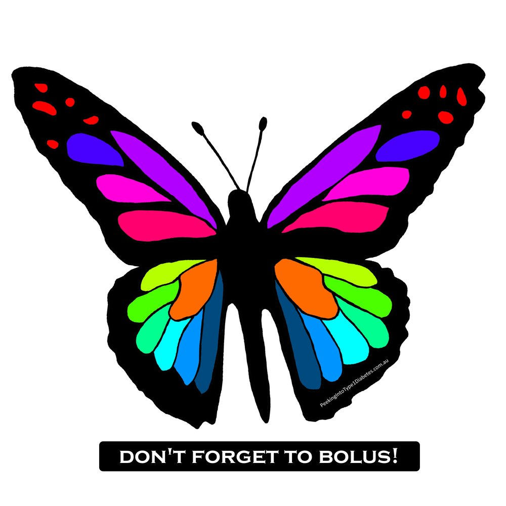 butterfly dont forget to bolus.jpg