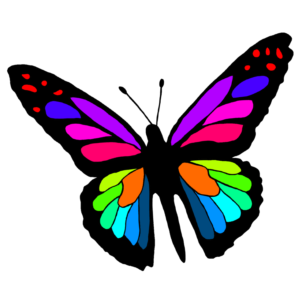 butterfly colour.png