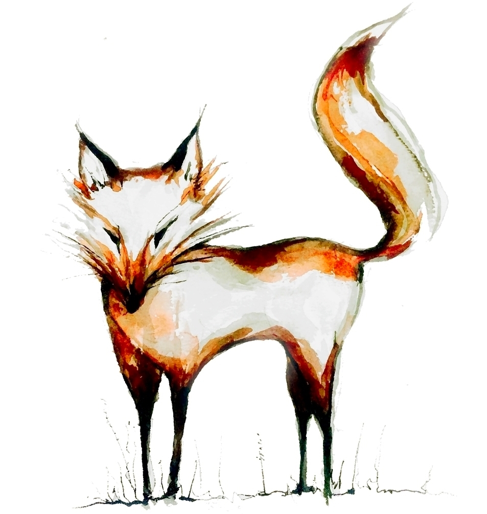 Fox_Illustration.jpg