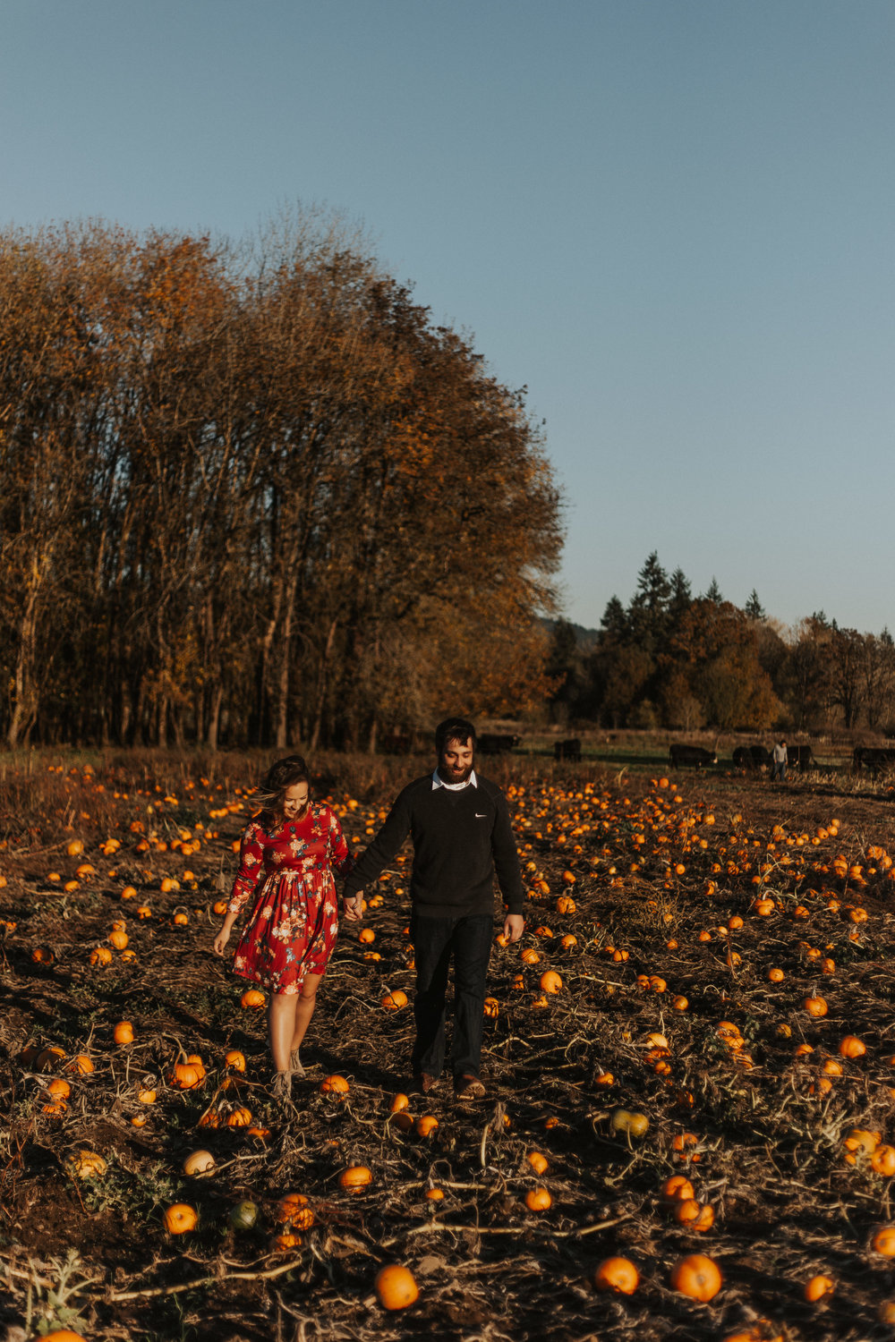 August-Muse-images-taylor-kelsey-vancouver-pumpkin-patch-washington-engagement-14.jpg