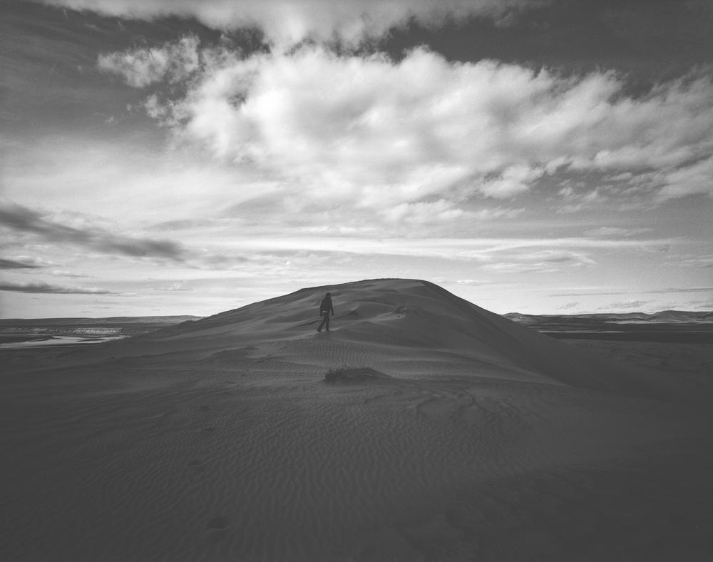 desertdream.jpg