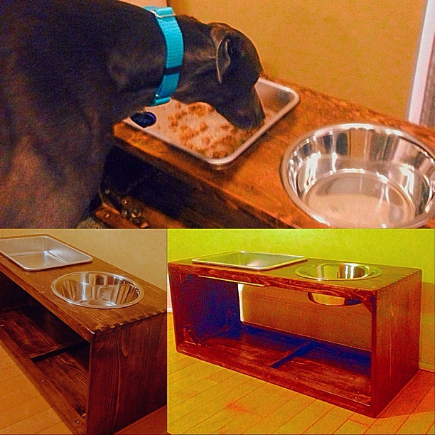 Raised Dog Food Stand