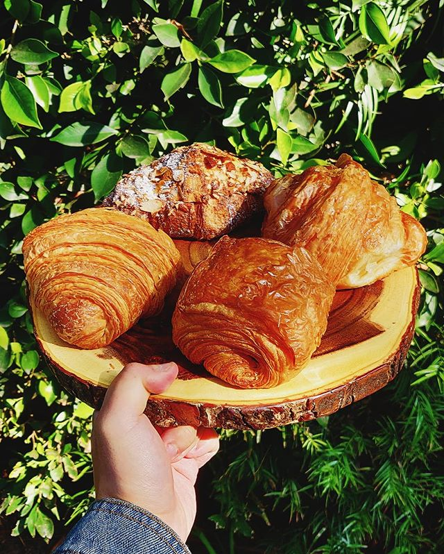 It doesn't need to be national croissant day for us to appreciate our @farmshopca croissants!