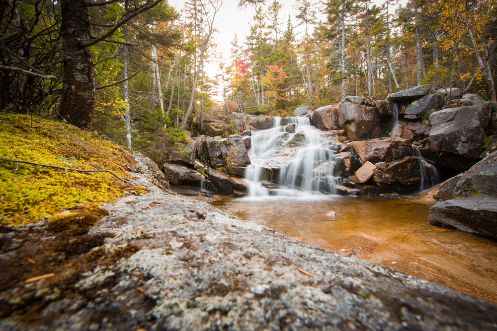 Zealand Falls in Franconia Notch State Park, New Hampshire.