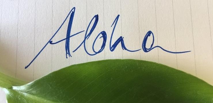 Aloha Hawaiians Life Coaching König.JPG