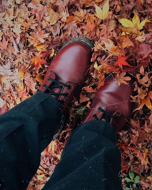 Couleurs d'automne. 🍁