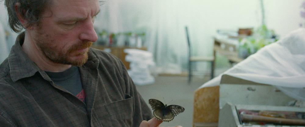 9 Rod butterfly-5.jpg