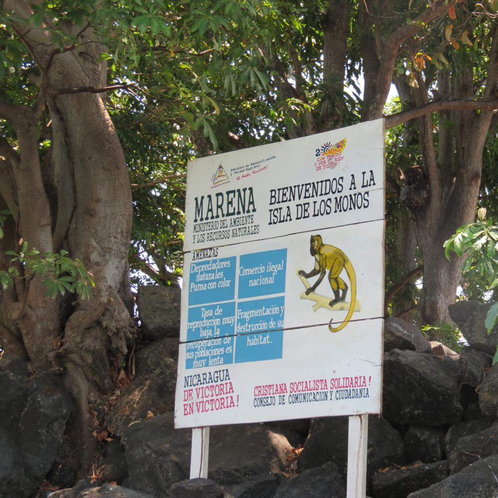 monkey-island-nicaragua