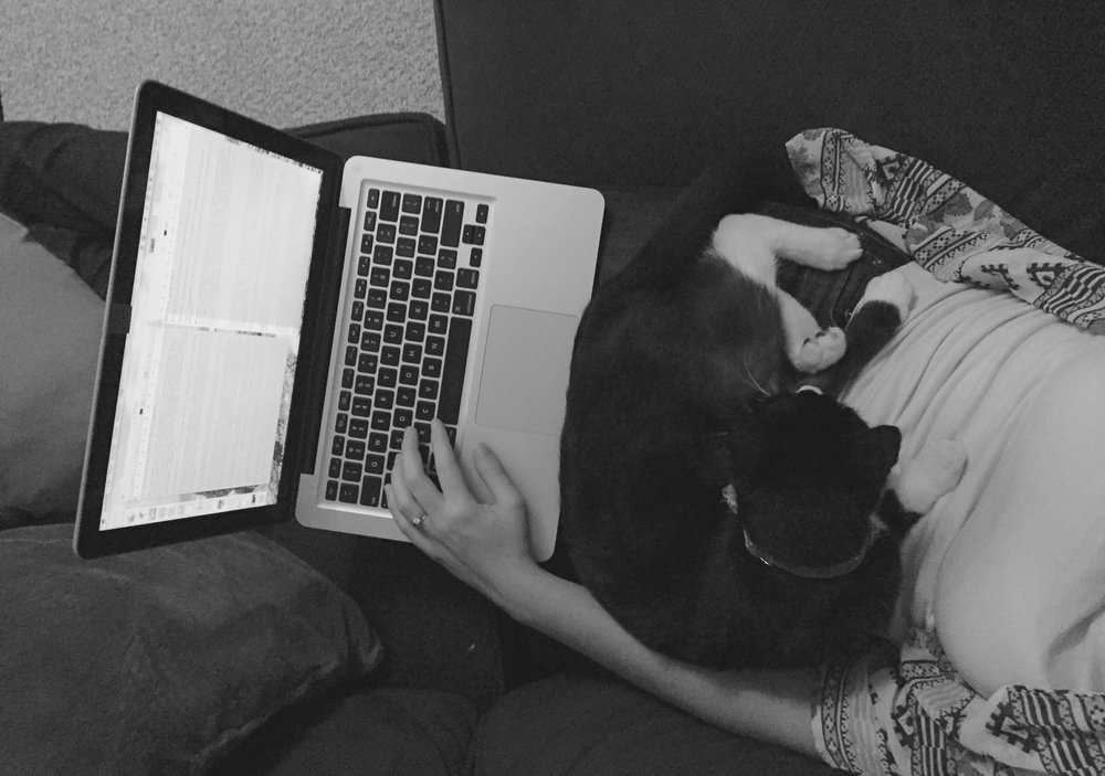 Editing with my favorite buddy, Rio the cat.