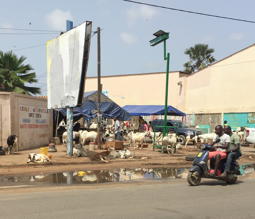 sheep-market-tabaski-senegal