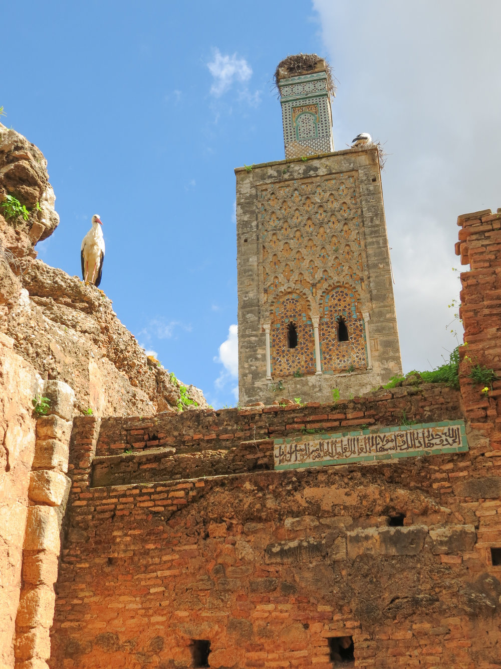 The minaret at Chellah is home to a large crane, which nests at the top of the ancient mosque.