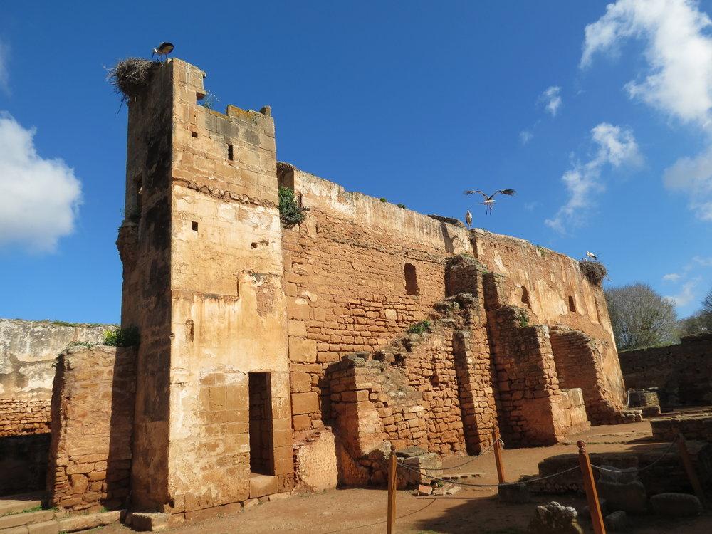 The Islamic ruins of Chellah, Rabat.
