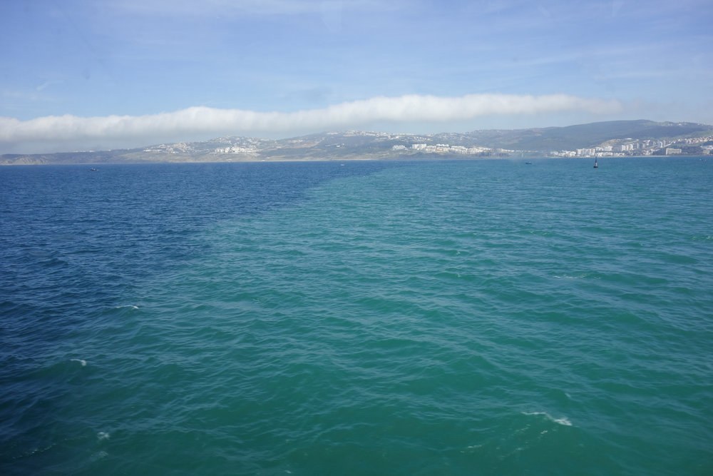 A defined line in the Mediterranean, in the crossing of the Strait of Gibraltar.