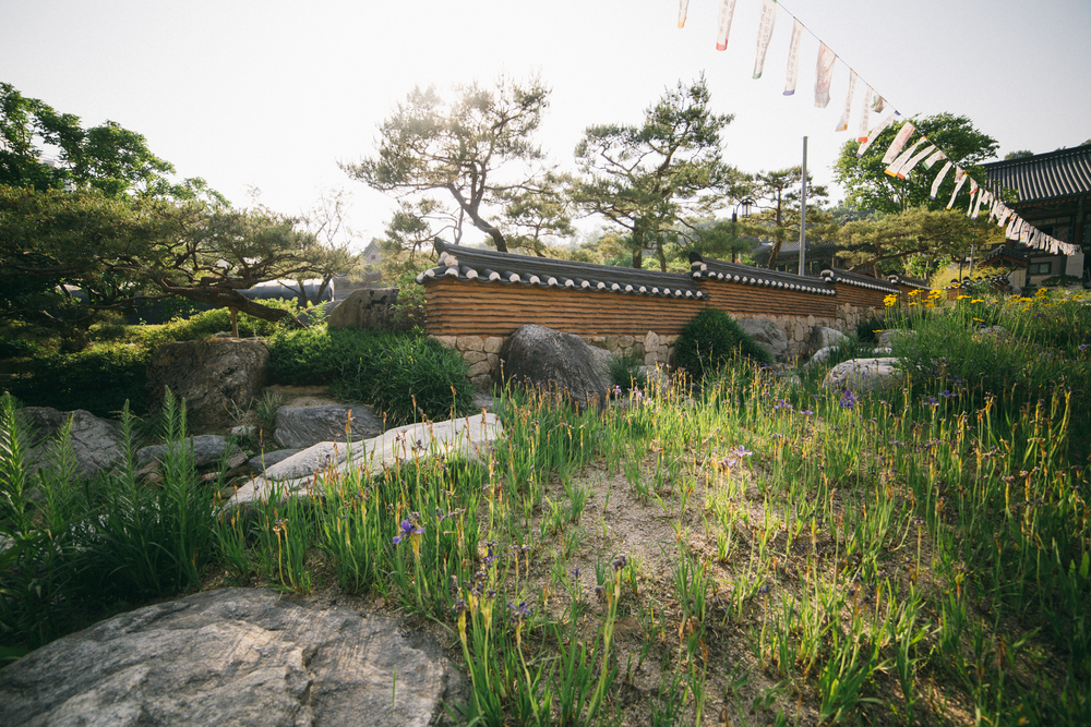Korea-50.jpg