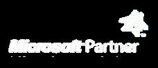micrsoft-partner-logo