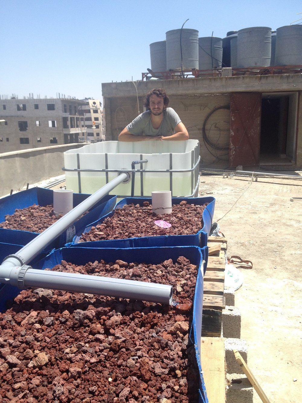 Finished rooftop aquaponic system