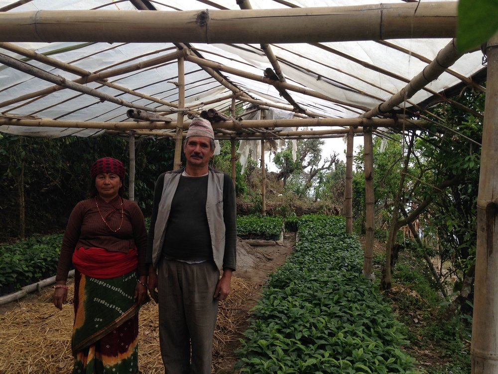 Organic farmers from the Pokhara Valley