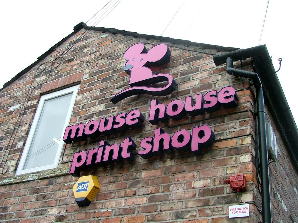 Mouse House 1.JPG