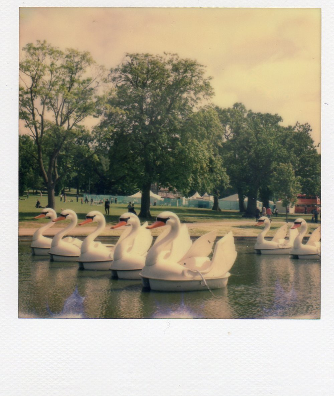 Polaroid2016002.jpg