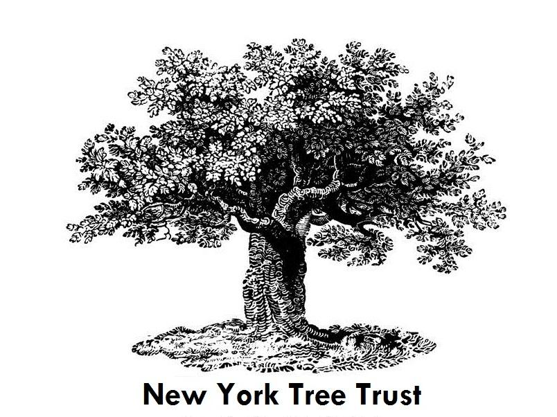 NY Tree Trust