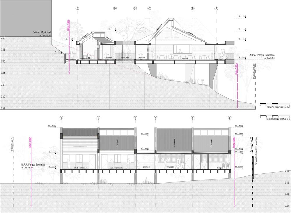 Secciones generales (transversal y longitudinal)