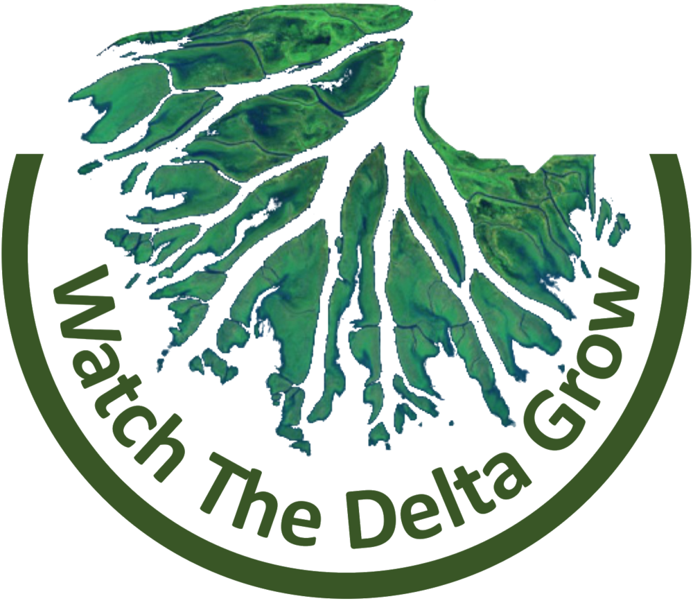 Watch the Delta Grow Logo