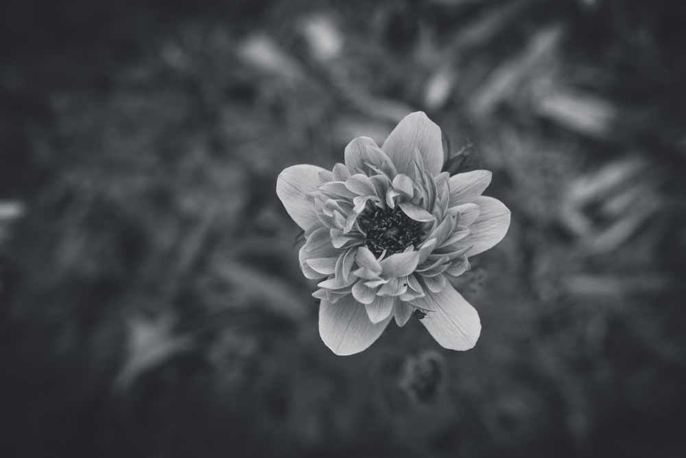 April-6070.jpg