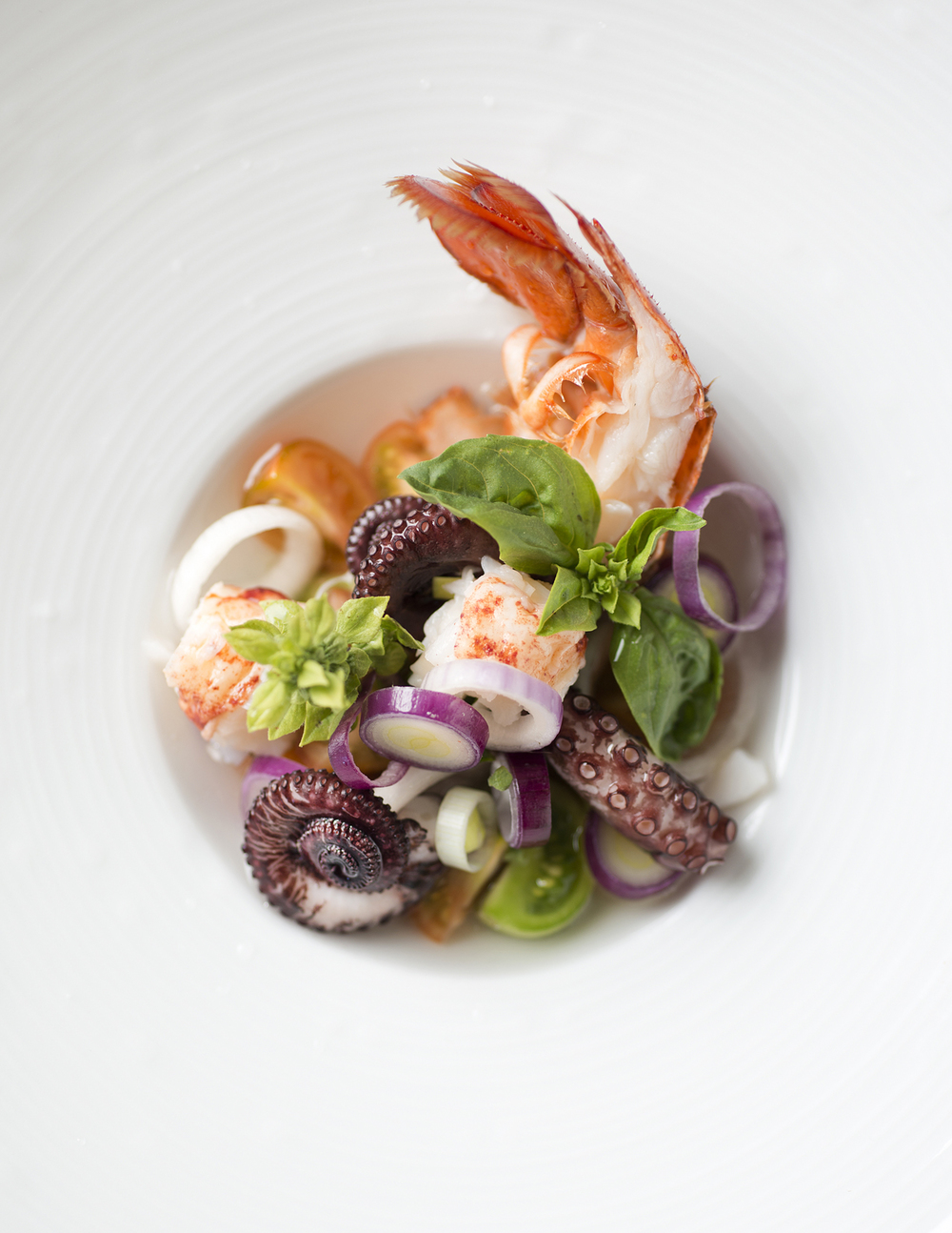 seafood+salad+merriam+restaurant+boston+photo