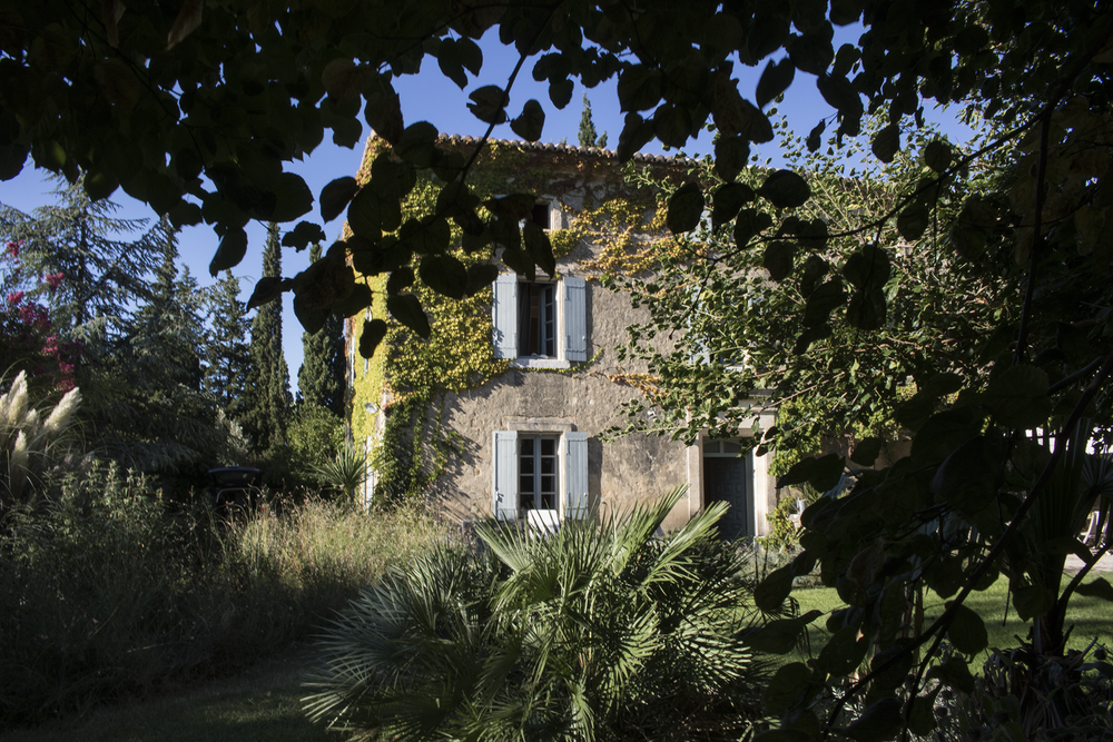 French country house behind leaves