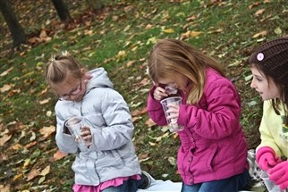 Students in the kindergarten and first grade multi-age class of Debra Blume and Jody Fox walked to Gunn Park in the Village of Edwardsburg to plant bulbs that will bloom in late fall and early spring.