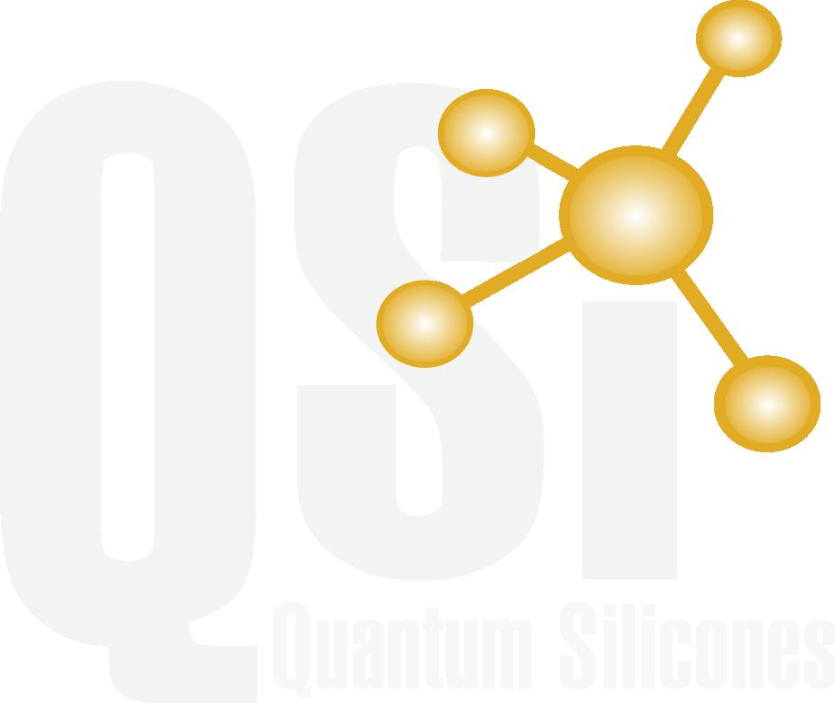 QSI Logo.png