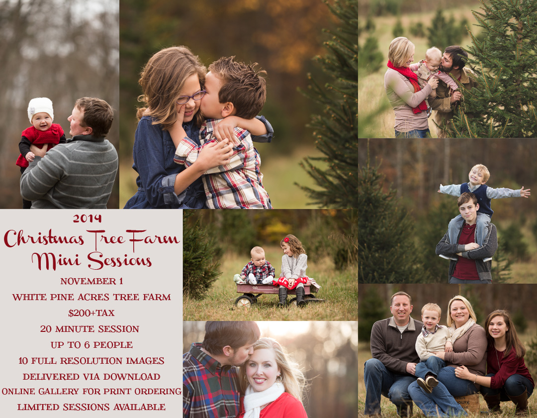 2014 ChristmasMinispromo