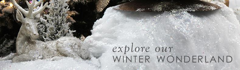 12-5_winter-wonderland.jpg