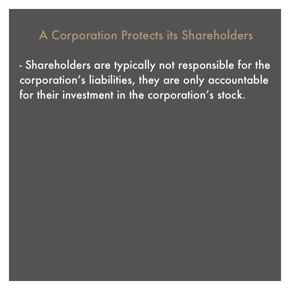 Corporations Explaination Box 2 - Shareholders.png