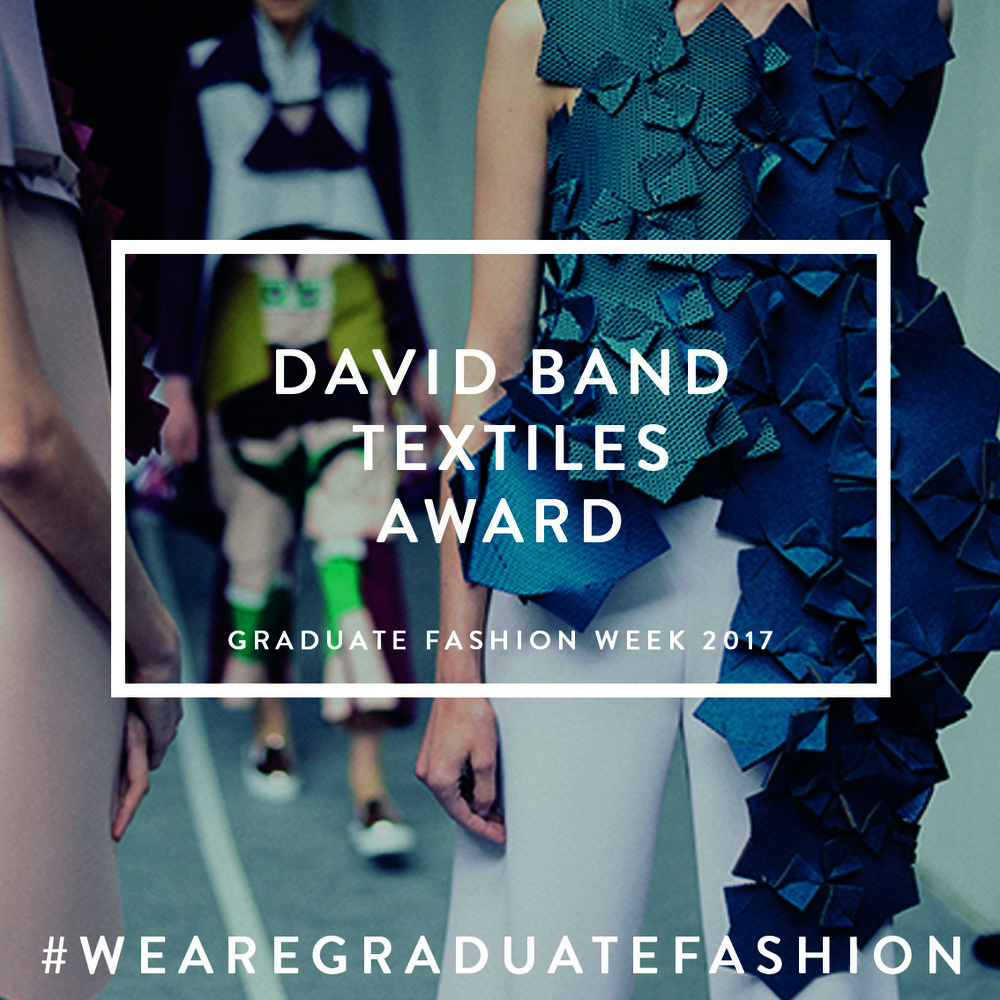 DAVID BAND TEXTILES AWARD copy.jpg