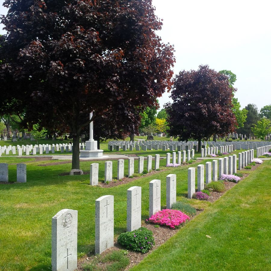 Headstones at the National Military Cemetery