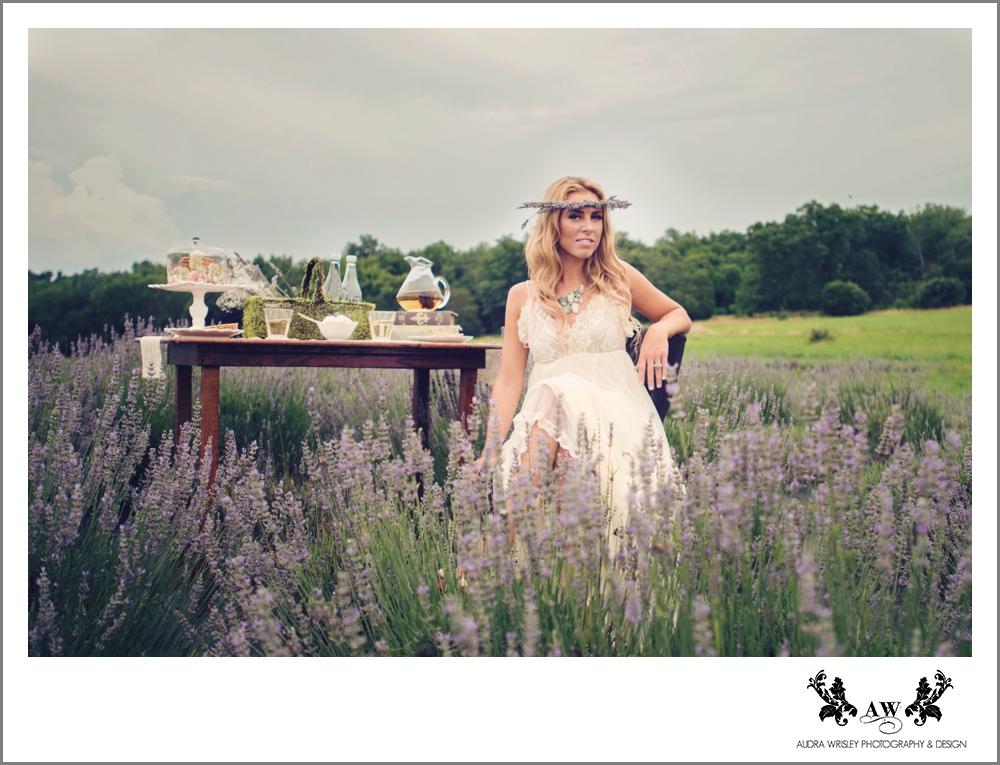 070_Lavender_WEB.jpg