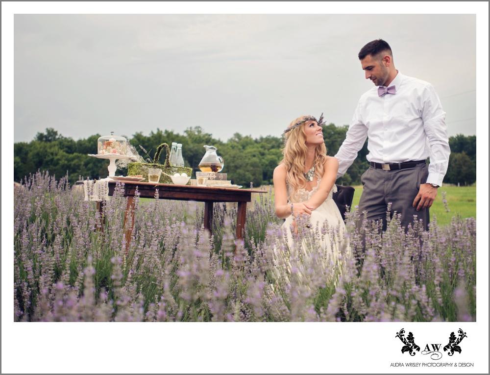 081_Lavender_WEB.jpg