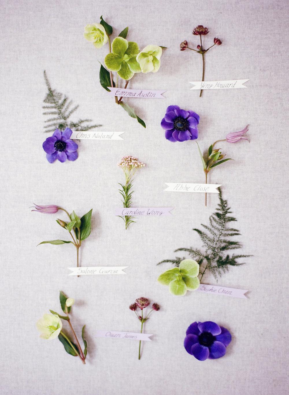 007_Botanical.jpg
