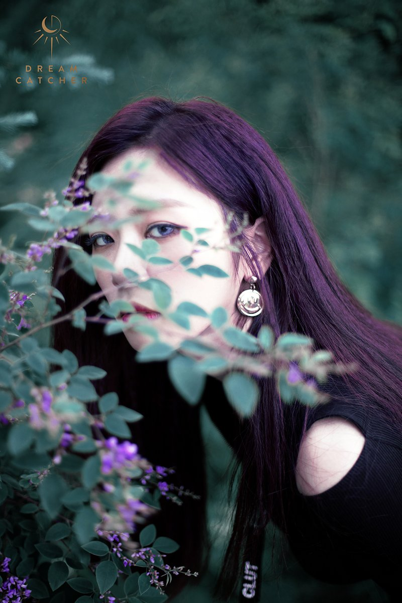 dream5.jpg
