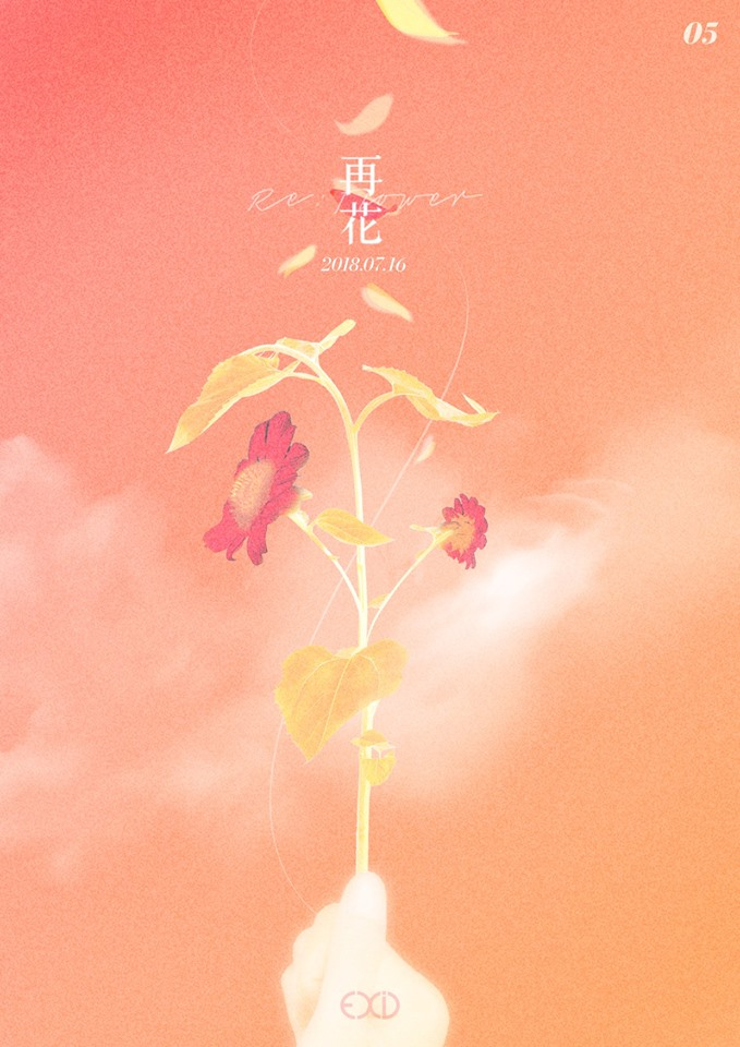 NEWS_EXID_RE FLOWER_BODY 05.png
